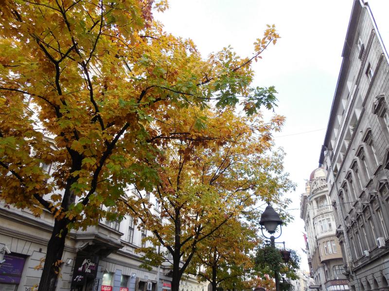 ベオグラードの秋